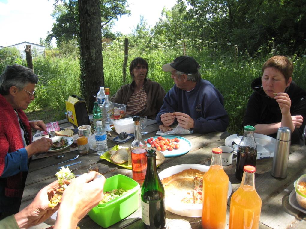 repas sous les arbres