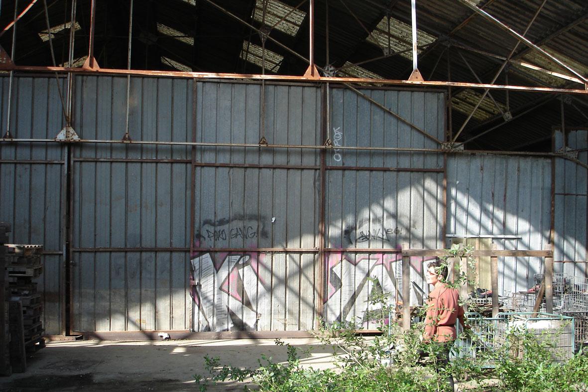 ob_f808db_25-dsc09721-nouveau-mur