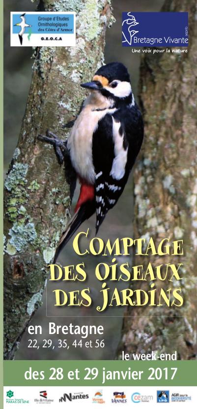 image cptage oiseaux