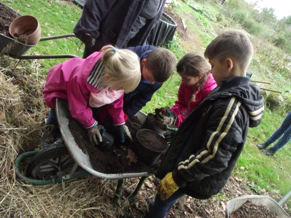 Activité au potager. Les enfants transportent du terreau pour les semis