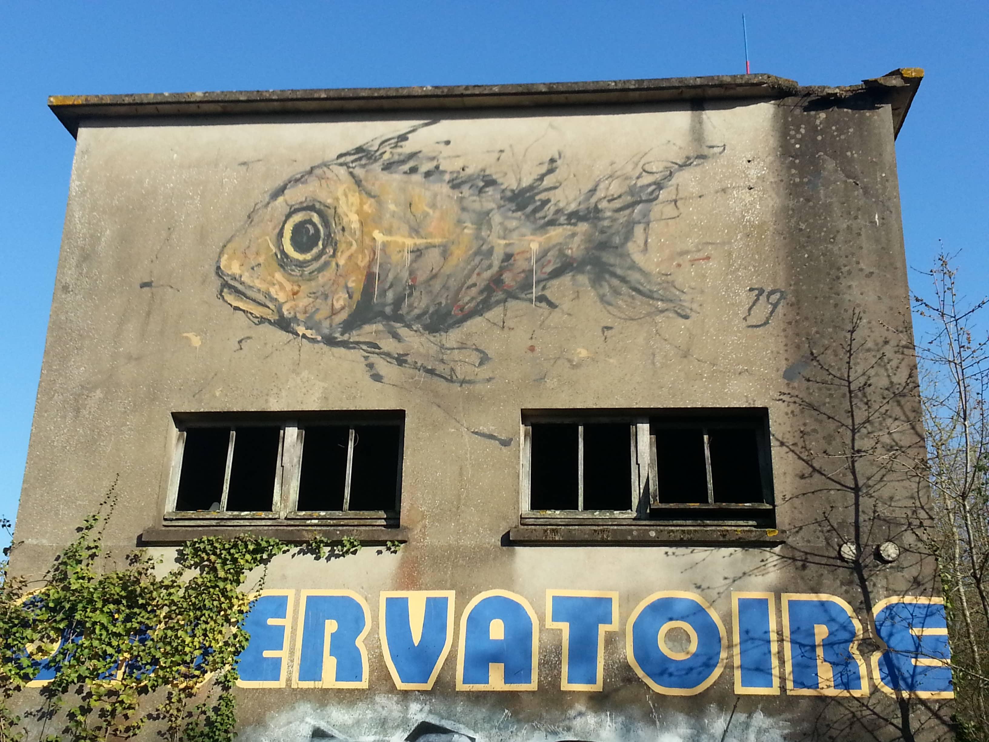 l'Art du Graff