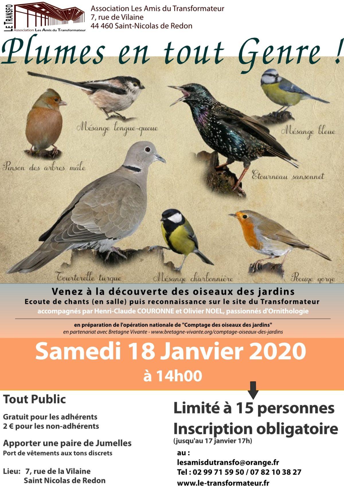 Découverte des oiseaux des Jardins – Sam. 18 janvier 2020 à 14h